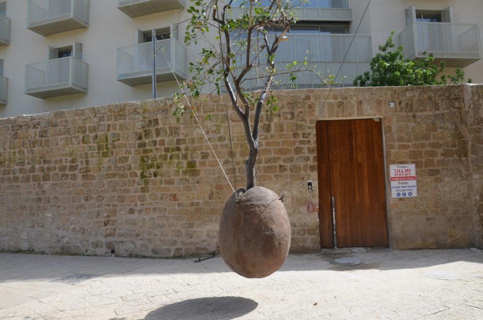 Einer der skurrilen Tel Aviv Tipps ist der schwebende Baum/Stein in Jaffa.