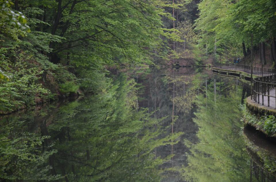 Tipps zu Sächsische Schweiz Sehenswürdigkeiten wären ohne den Amselsee nicht vollständig.