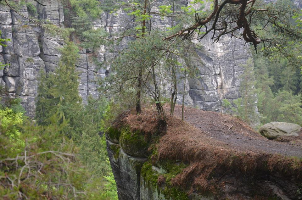 Bei Wanderungen in der Sächsischen Schweiz bekommst du faszinierende Felslandschaften zu sehen.