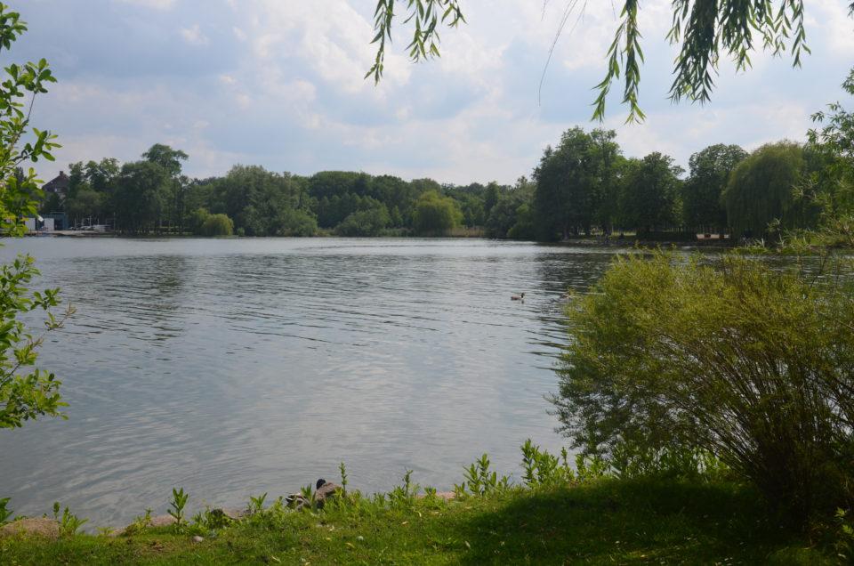 Viele Schwerin Geheimtipps und Insider Tipps tummeln sich am Südufer des Schweriner Sees.